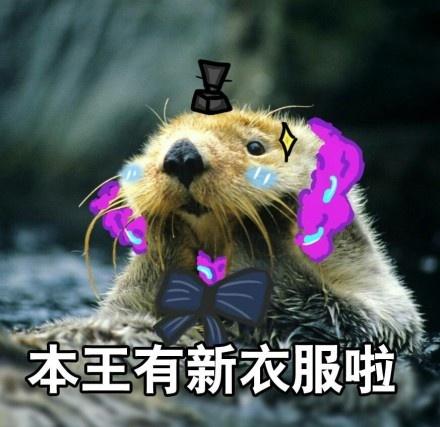 阴阳师荒川与姑获鸟皮肤细节曝光 咸鱼王终于也有春天
