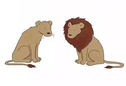 蠢萌小动物插画《你今天真好看》快来找回你未泯的童心吧!