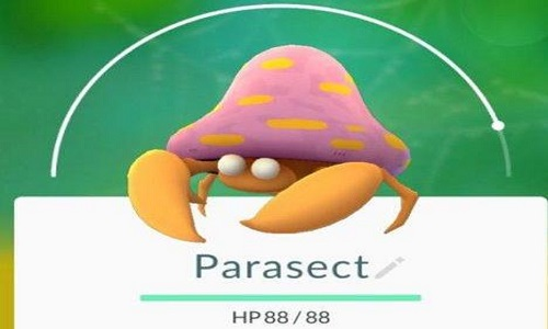 PokemonGO精灵宝可梦GO水伊布克制方法 水伊布怎么打