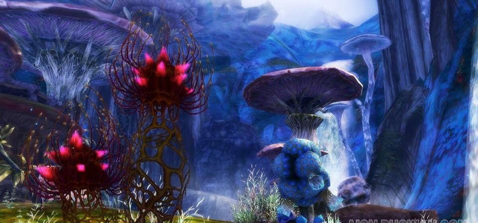 永恒之塔风景美图展 萌萌的野生大蘑菇