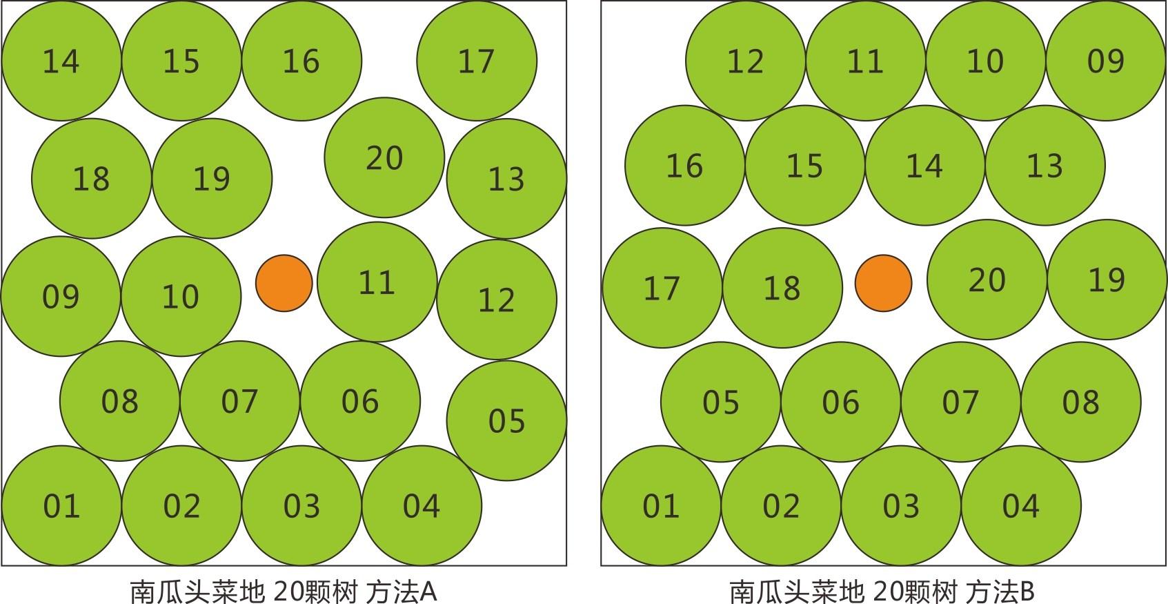 上古世纪南瓜头菜地种20棵树方法图解