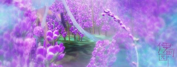 梦幻紫色伊甸园 经典神域花海风景美图