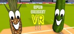 休闲板球VR