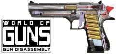 枪支世界:枪支拆解