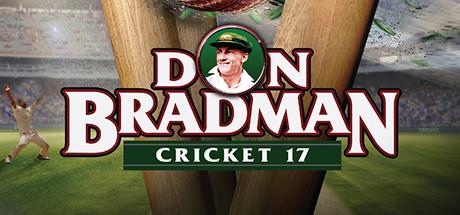唐·布拉德曼板球17