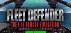 舰队后卫:F-14 Tomcat模拟