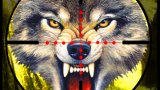 Wolf Sniper Hunting 3d