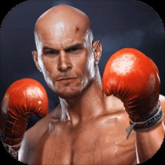拳击对抗 - 真正的拳头