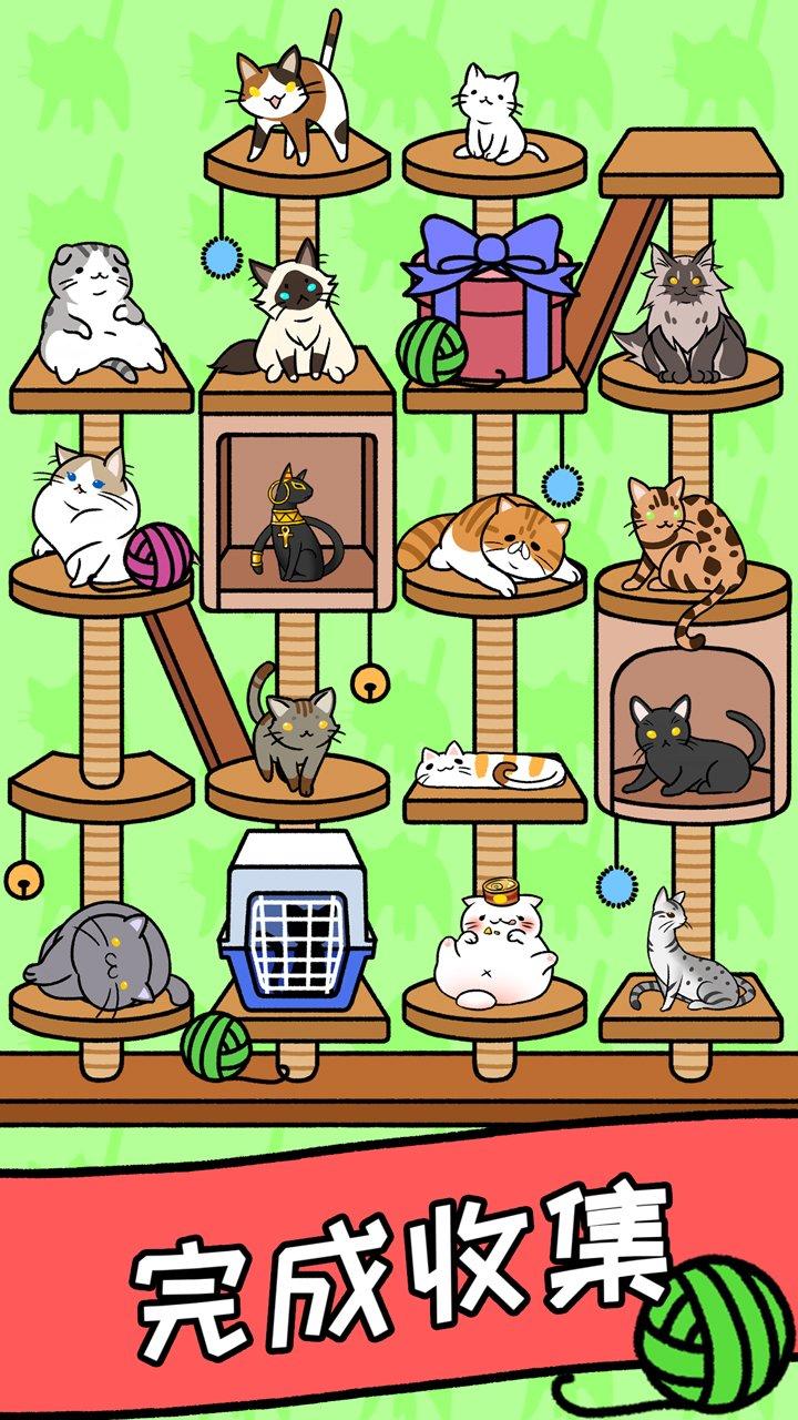 猫咪公寓截图第5张