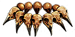 Headhunter_race_season_7_inventory_icon.png