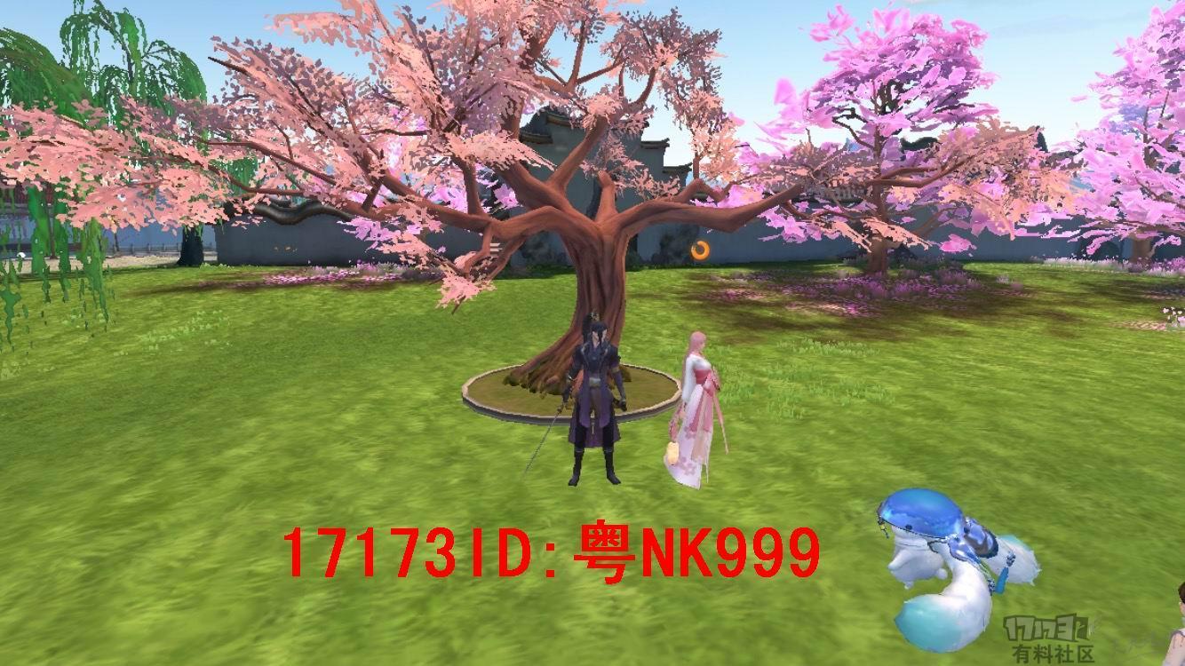 5553213.jpg
