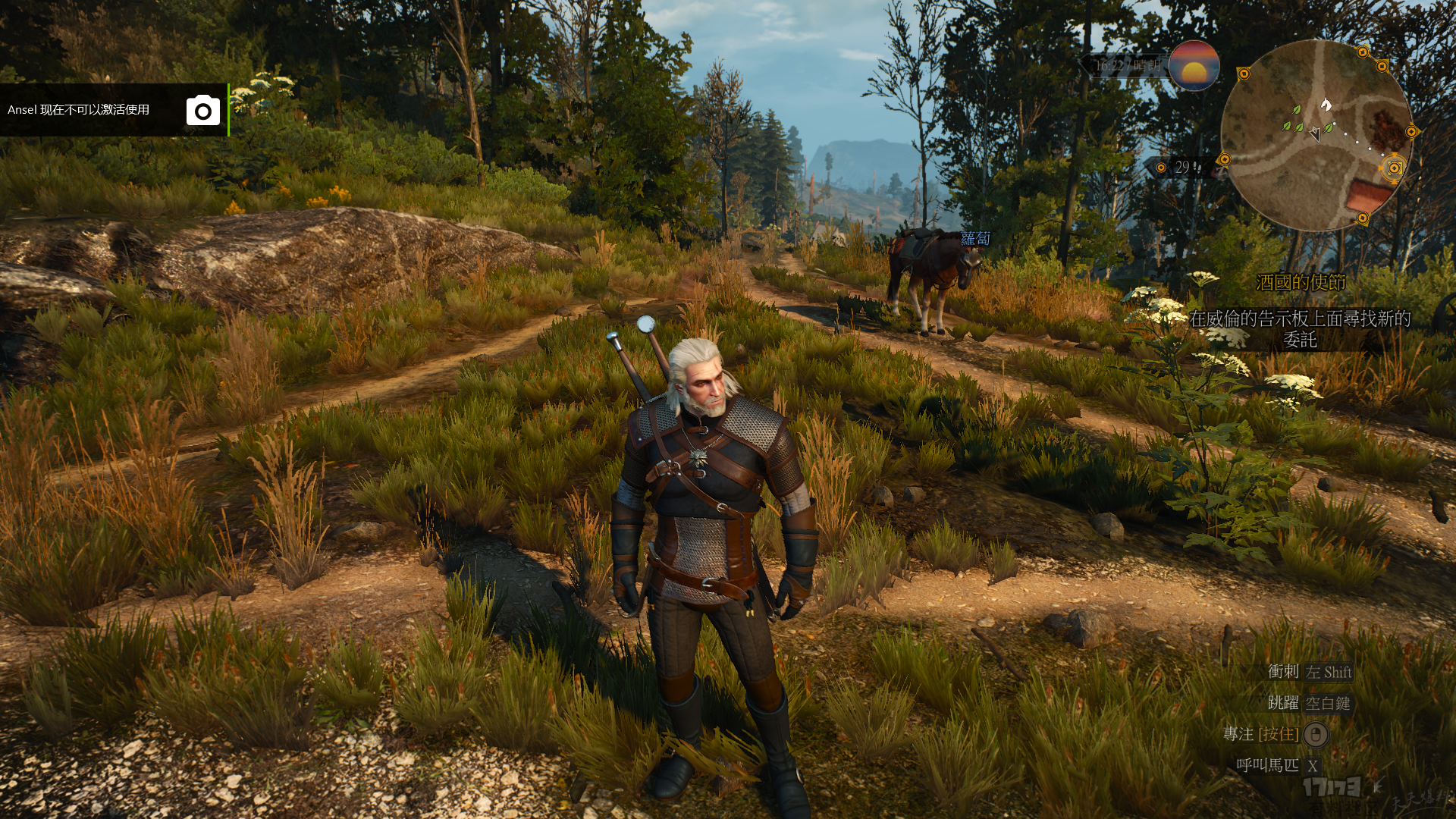 The Witcher 3 Screenshot 2018.04.20 - 22.38.33.45.png