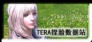 TERA捏脸数据站