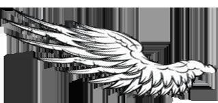 翅膀1.png