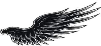 翅膀2.png