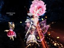 【召唤专属】——技能特效——粉白色の月季花~~~