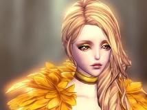 【Nami 】金の翼