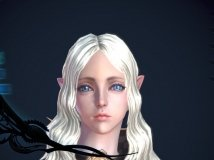 The charm of the elves——魅惑的精灵