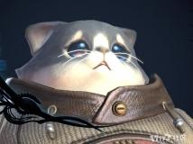 ❀激萌~~小猫❀