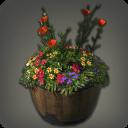 橡木低矮花盆