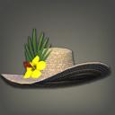 黄金葵宽边草帽