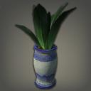 盆栽龙舌兰