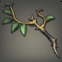 绿叶枫木幻杖