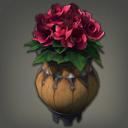 杜鹃花盆栽