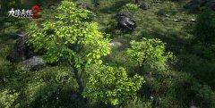 九阴2植物截图