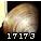 精巧的蛤蜊螺钿